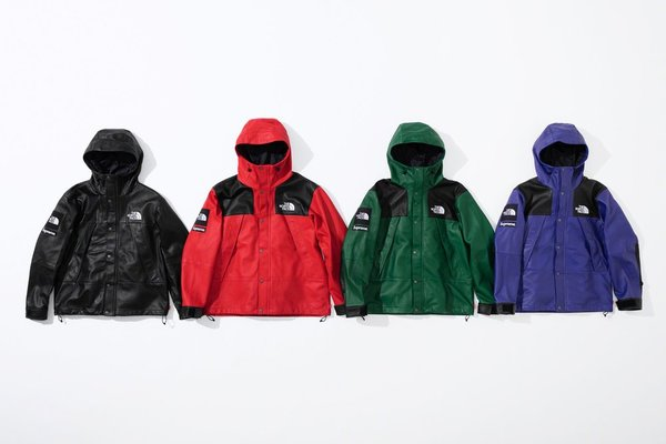 Supreme × The North Face 2018AW 01